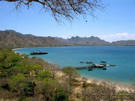 pulau komodo  ntt tempat wisata foto gambar wallpaper