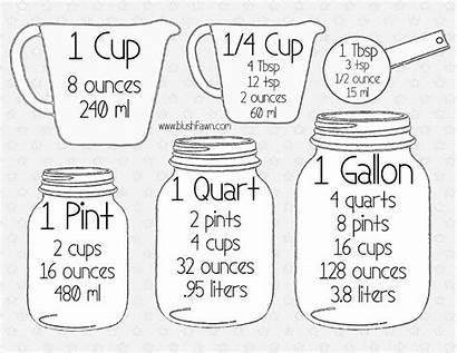 Kitchen Measurements Conversion Chart Measurement Cooking Conversions