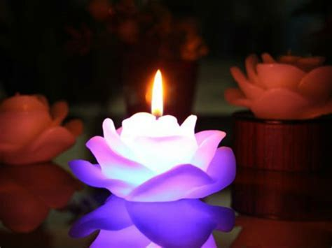 bougie fleur beaut 233 en image