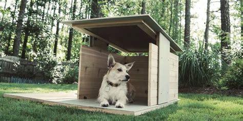 ideas  hacer casas de perros  decoracion de