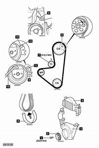 How To Replace Timing Belt On Citroen C3 1 1 2009