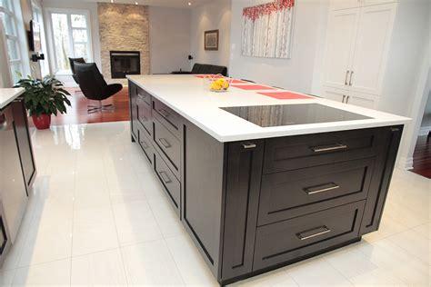 cuisine moderne cuisine moderne merisier teint et laqué armoires