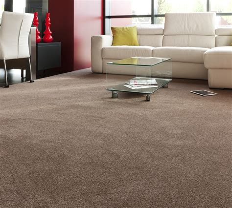 will carpet suit for the living room household