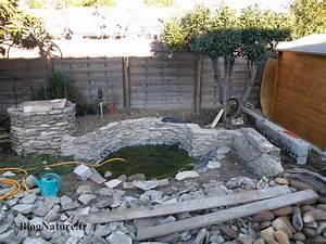 Reve de gosse un bassin dans le jardin blognaturefr for Nice idee deco jardin gravier 15 reve de gosse un bassin dans le jardin blognature fr