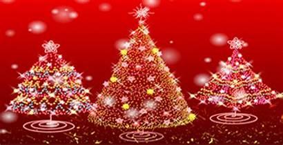 Christmas December Lambeth Monday Xmas Trees Gov