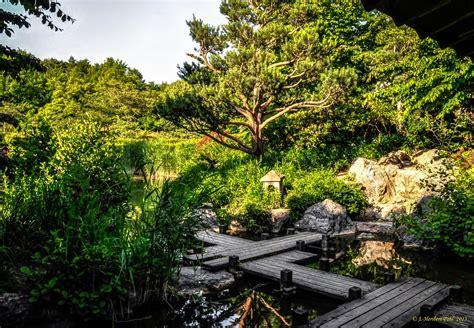 Japanischer Garten Munchen Anfahrt japanischer garten im westpak m 252 nchens der japangarten