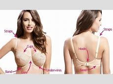 How to Choose the Right Bra for Every Type of Outfit and