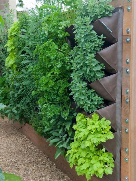 vertical wall garden ideas hgtv