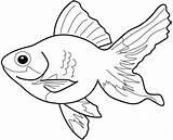 Fish Coloring Sheets Colouring Sheet Goldfish Printable Colors Clipart sketch template