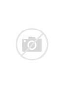 The Shield - Staffel 3...
