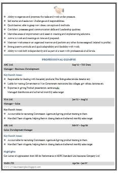 Sle Professional Resume Format by Awesome One Page Resume Sle For Freshers Career