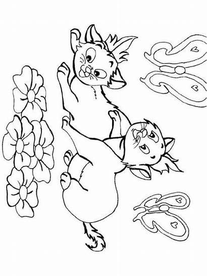 Coloring Pages Cats Animals Printable Cat Mycoloring