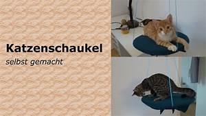 Gemüse Für Katzen : diy katzen spielzeug katzenschaukel follow salt pepper ~ Watch28wear.com Haus und Dekorationen