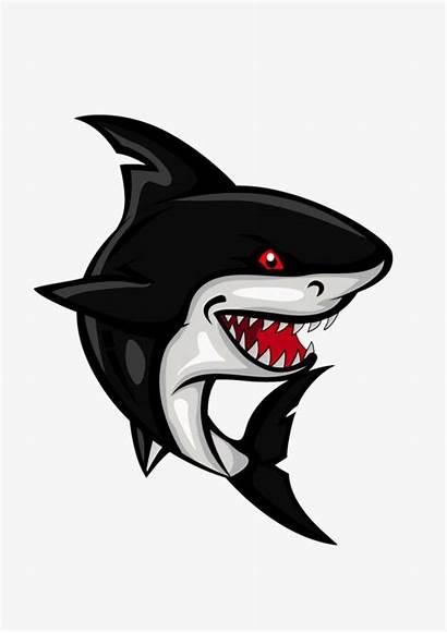 Shark Vector Cartoon Clipart Clip Eyes Teeth