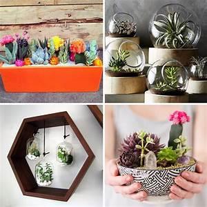 pinterest 25 idees deco avec des cactus des succulentes With idee deco cuisine avec pinterest deco paques