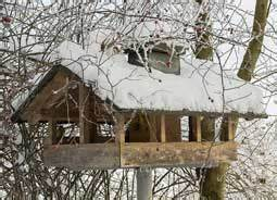 Vogelhaus Bauen Mit Kindern Anleitung : v gel f ttern im winter ab wann und mit was verraten wir ~ Watch28wear.com Haus und Dekorationen