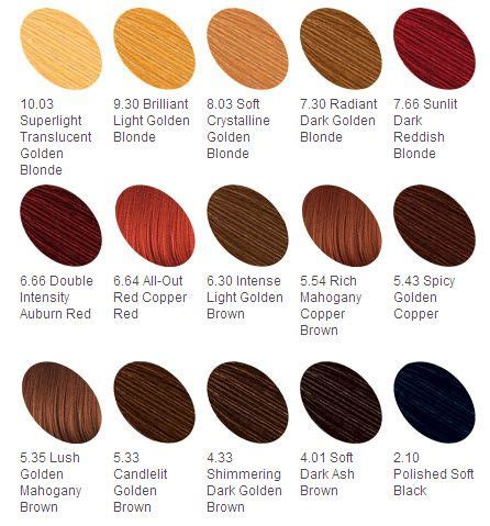 Hair Color Descriptions by Best 25 Loreal Hair Color Chart Ideas On