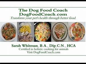 Vet Recommended Homemade Dog Food YouTube