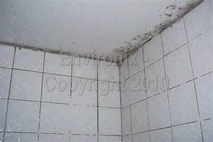 how to get rid of mildew on ceiling in bathroom best With brown mould in bathroom