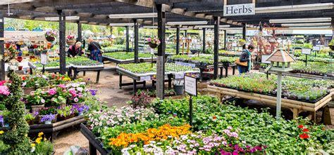 create  amazing garden bell plantation