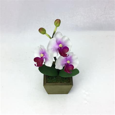 ดอกกล้วยไม้สีRed lavender จัดในกระถางไม้สี่เหลียม