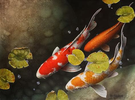 Koi Wallpaper (38 Wallpapers)  Adorable Wallpapers