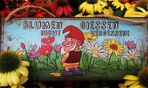 Topfpflanzen Giessen Und Richtig Pflegen by Pflanzen Richtig Gie 223 En Pflanzenparadies Weinheim De