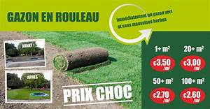 Prix Pelouse En Rouleau : la pelouse en 15 questions ~ Dailycaller-alerts.com Idées de Décoration