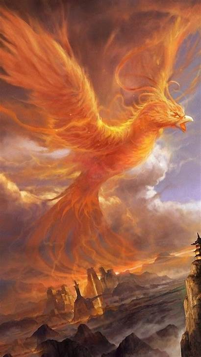 Phoenix Phone Wallpapers Android Suns Resolution Mobile