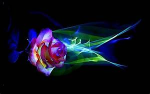 gousicteco: Neon Rainbow Roses Wallpaper Images