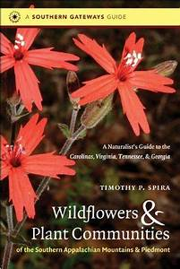 Wildflowers And Plant Communities Of The Southern