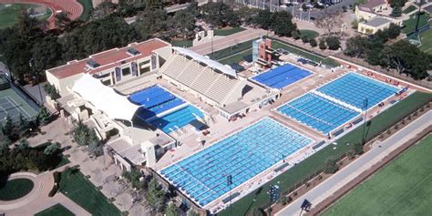 42 Best Stanford Swimming Images On Pinterest