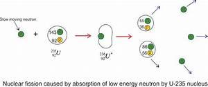 Nuclear Fission Basics