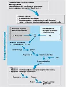 Лекарства при климаксе приливах и повышенном давлении