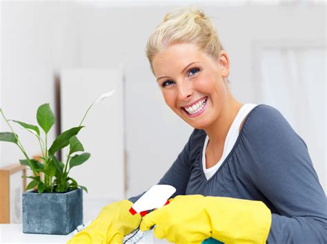 house cleaning services  ottawa carpet cleaning ottawa