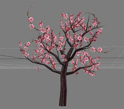 ornamental flowering peach tree  model maya files
