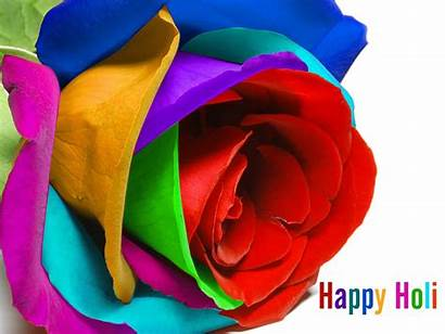Holi Happy Wallpapers Colorful Wishes Rose Punjabi