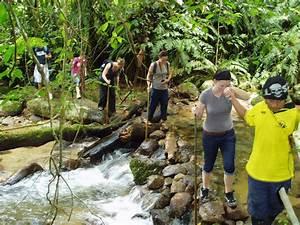 Hiking in Phu Quoc - Phu Quoc Island Tourism