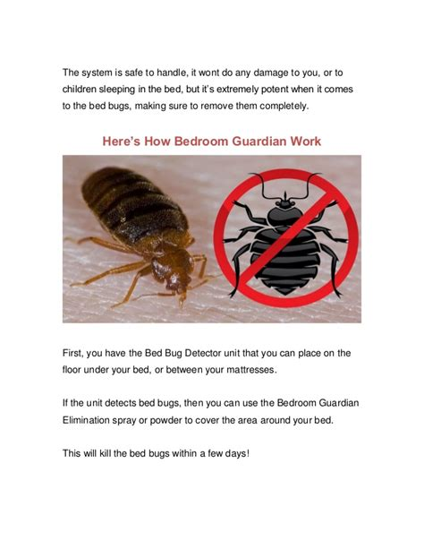Bedroom Guardian by Bedroom Guardian Reviews Don T Believe The Lies You Hear
