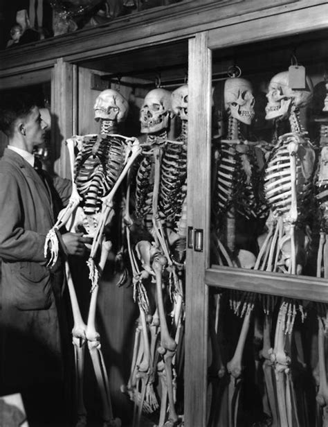 Skeletons In My Closet oh by the way vintage