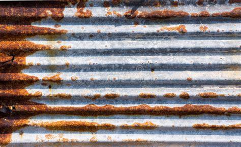 rust zinco zinc panel ruggine sandwich galvanized folha plate dello lopanel textura ganaderia aragon lastra della iron corrosion cerdos ovejas