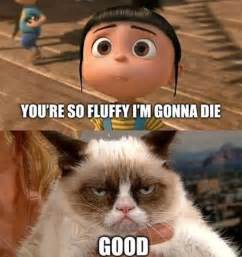 the funniest despicable me memes