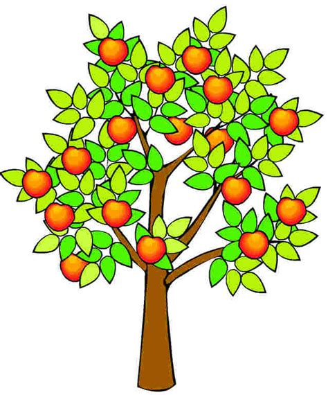 realistic apple tree drawing realistic apple tree drawing clipart panda free images