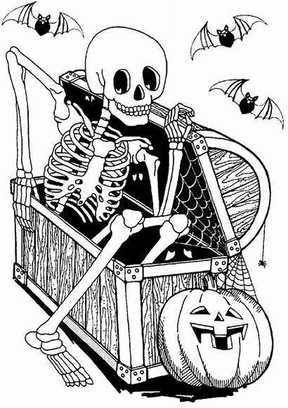 Skeleton Halloween Printable Coloring Chest Pages Adults