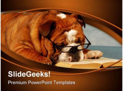 bulldog sleeping animals powerpoint templates