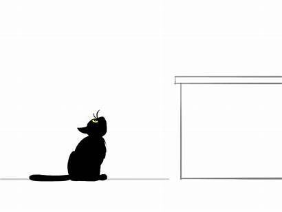 Cat Jump Animation Animated Clipart Deviantart Giphy