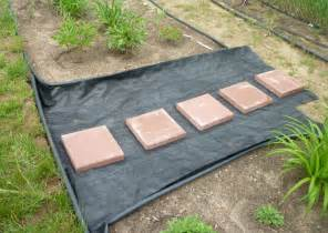 Garden Gravel Path with Stepping Stones