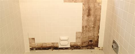 Kill Black Mold In Shower by Mold In Bathroom Wall