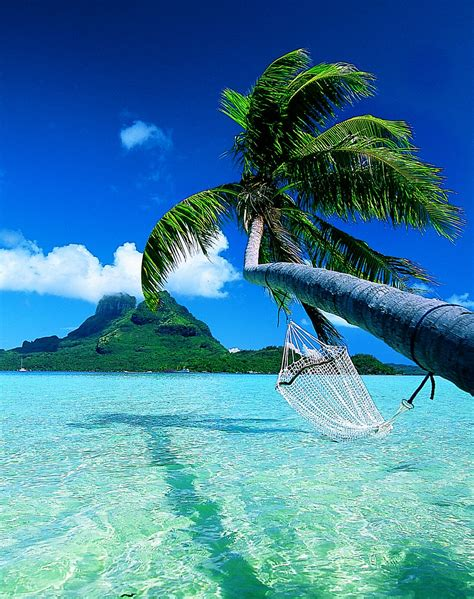 world visits bora bora island paradise on the earth