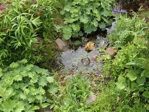 Bachlauf Im Garten : garten anders einen bachlauf im garten mit teichfolie anlegen ~ Michelbontemps.com Haus und Dekorationen